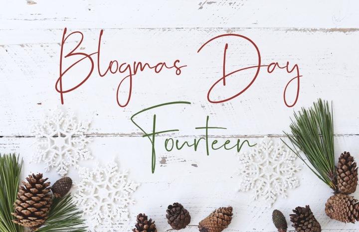 Blogmas Day #14: LifeUpdates